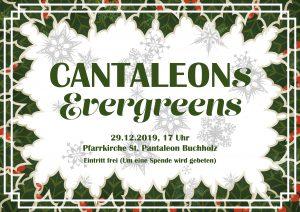 Cantaleons Evergreens